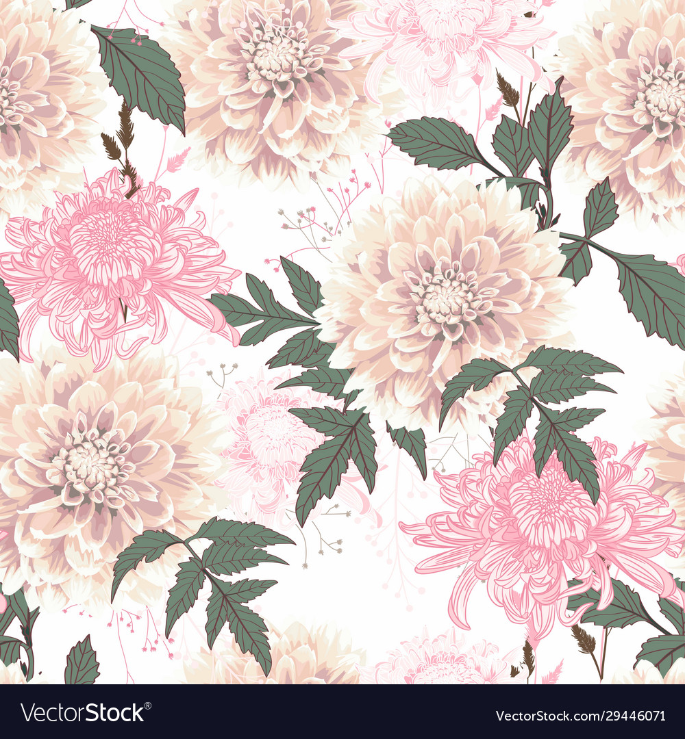 Dahlia And Pink Chrysanthemums Flowers Royalty Free Vector