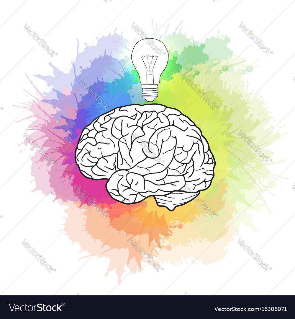 Linear of human brain with light bulb and rainbow Vector Image