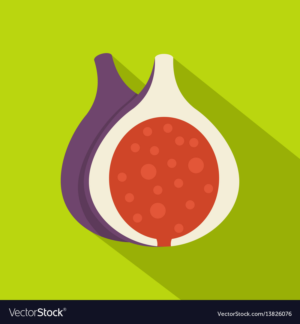 Half of fig fruit icon flat style