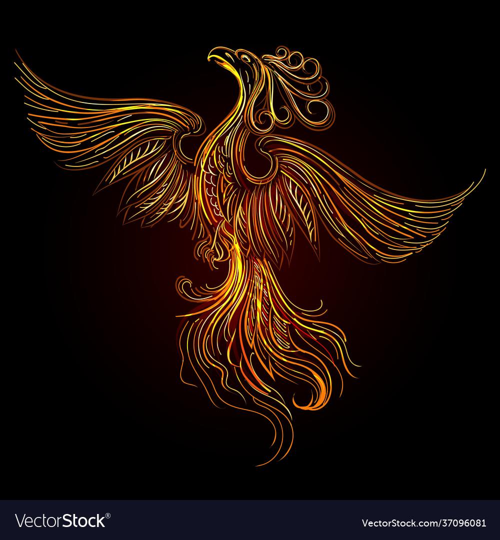 Rising phoenix on black background