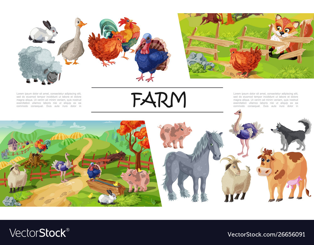 Cartoon farm animals concept