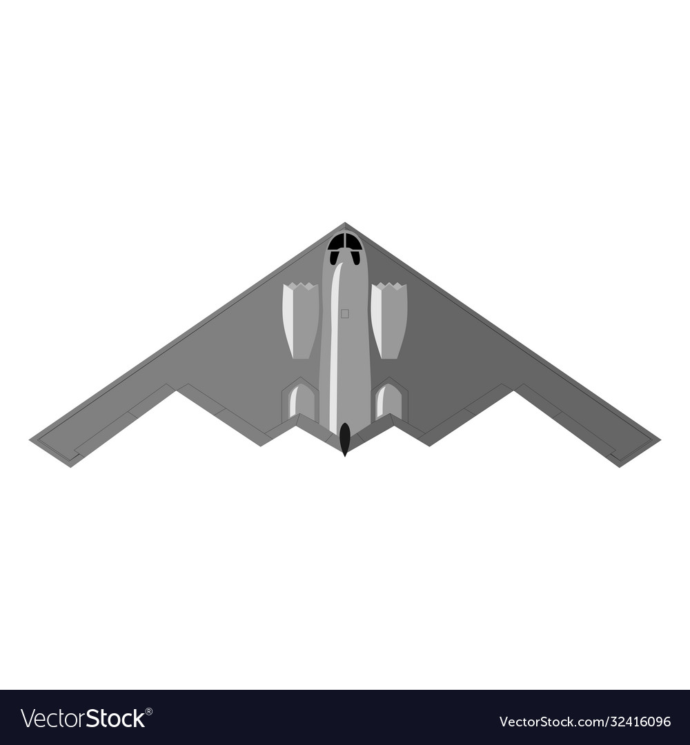 Stealth bomber aircraft military attack avionics vector