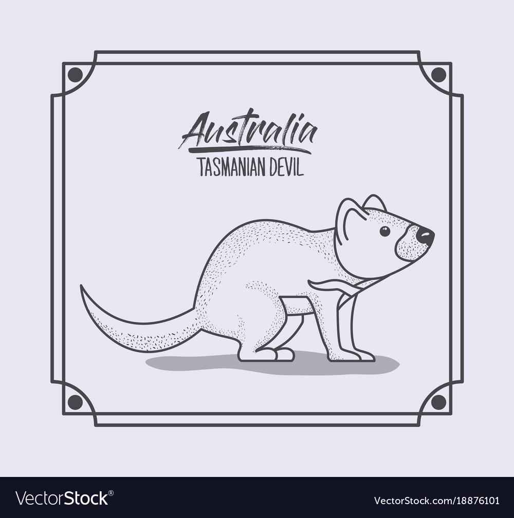 Tasmania & Devil Vector Images (30)