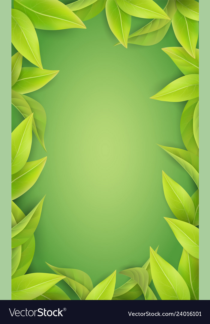 Lush green leaves on a green background