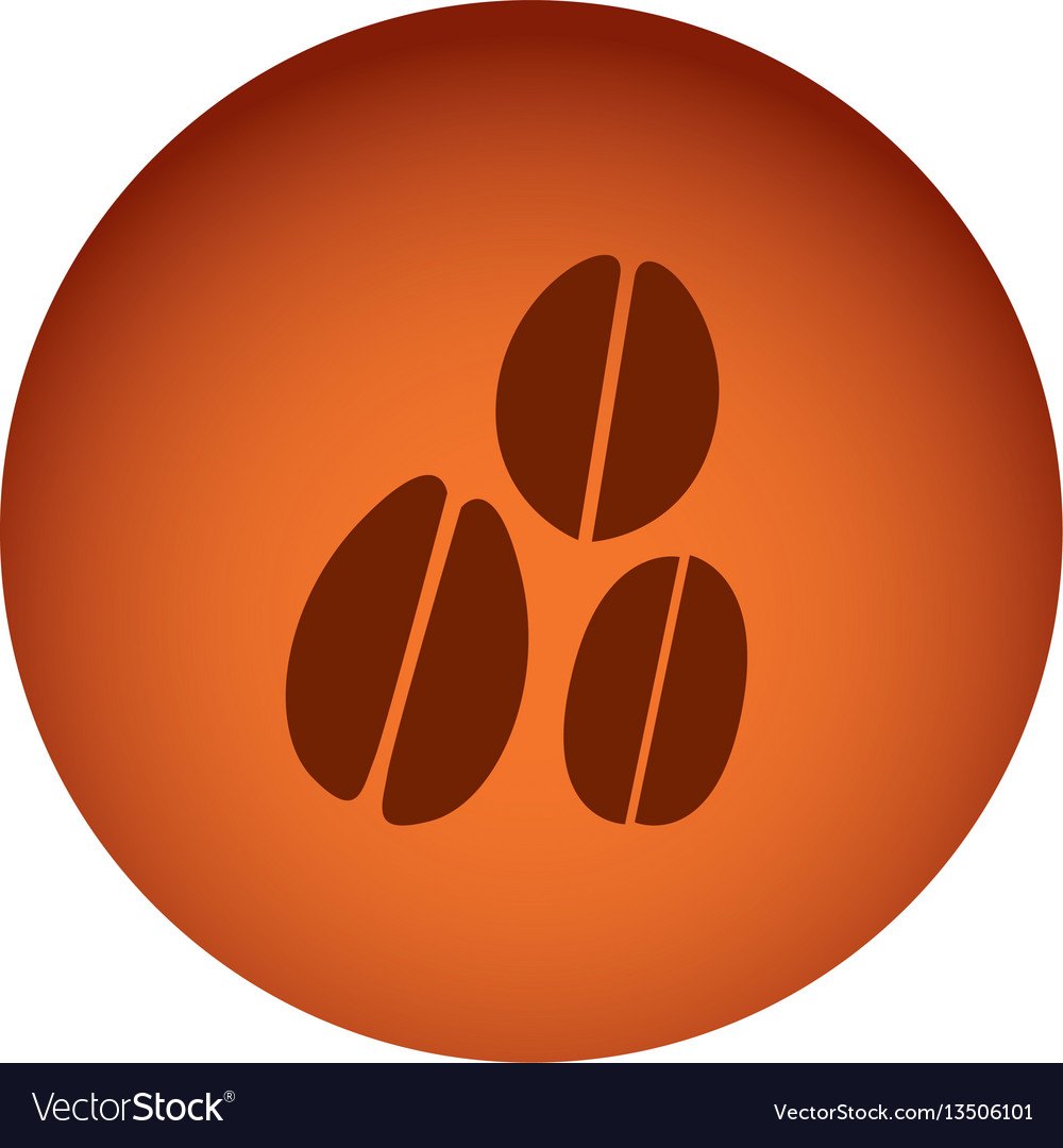 Orange emblem grains coffee icon vector image