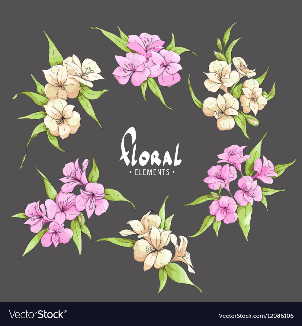 Chic Pink And Pale Yellow Flowers Royalty Free Vector Image