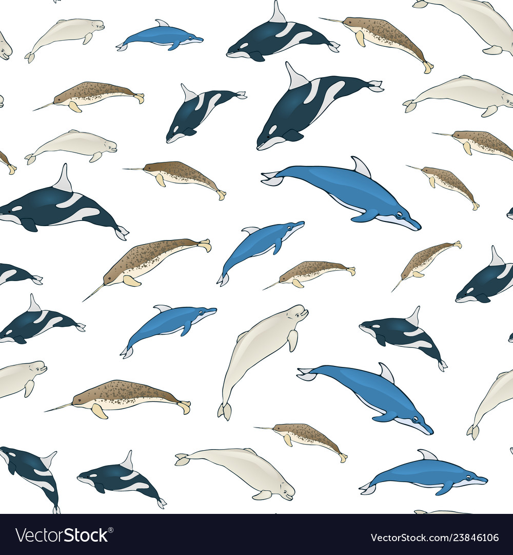 Seamless background of cartoon whales