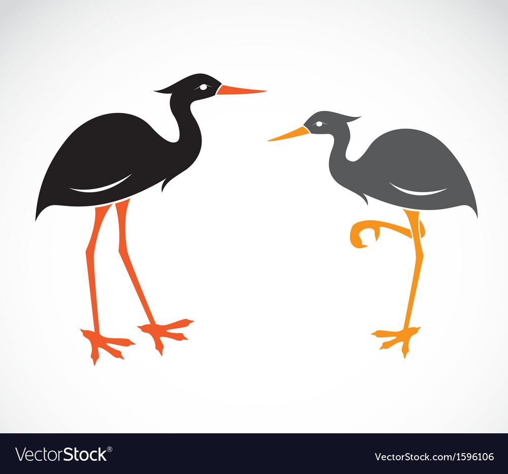 stork royalty free vector image vectorstock rh vectorstock com stock vector stock vector graphics