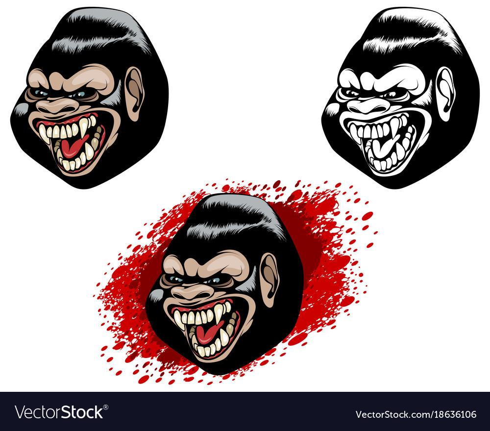 Three heads of gorillas vector image
