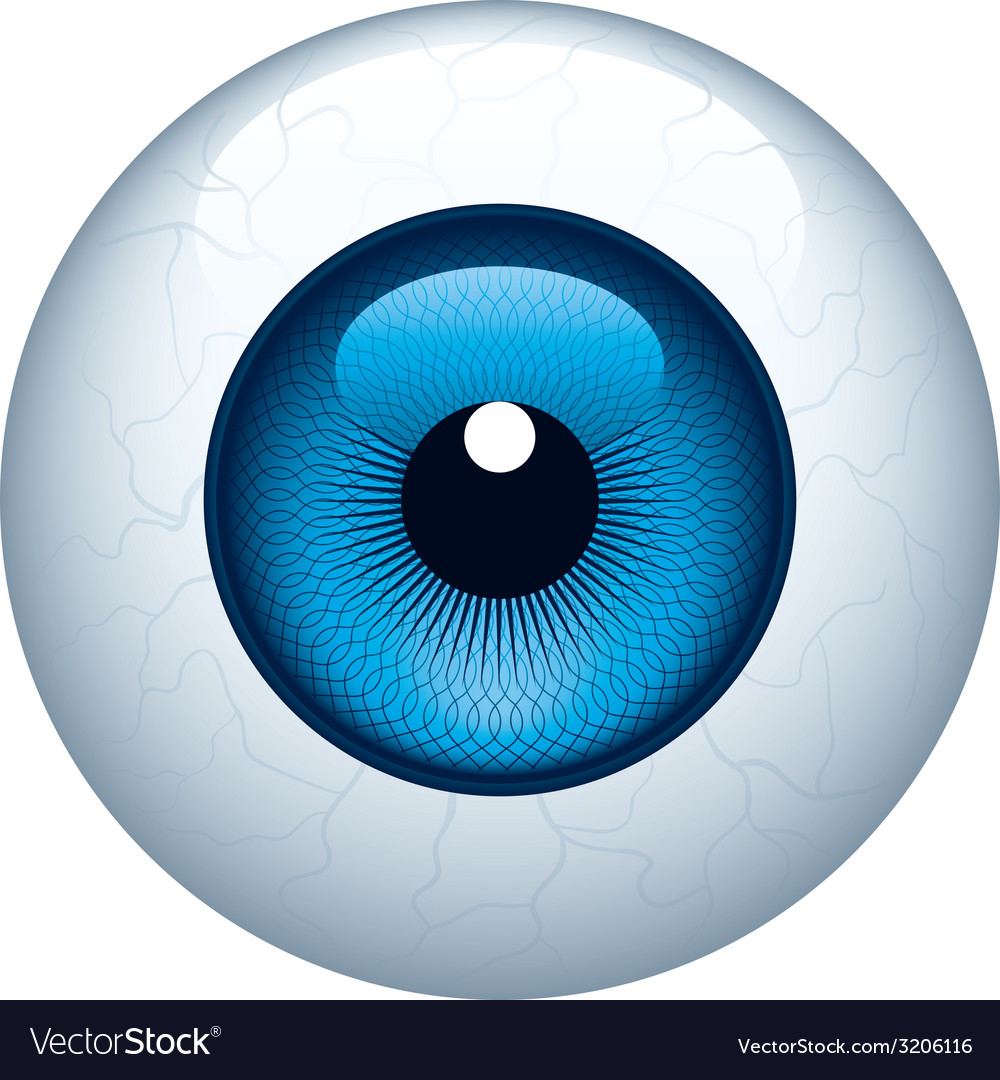 eyeball royalty free vector image vectorstock rh vectorstock com free eyeball vector flying eyeball vector