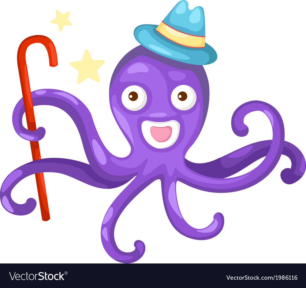 Isolated octopus