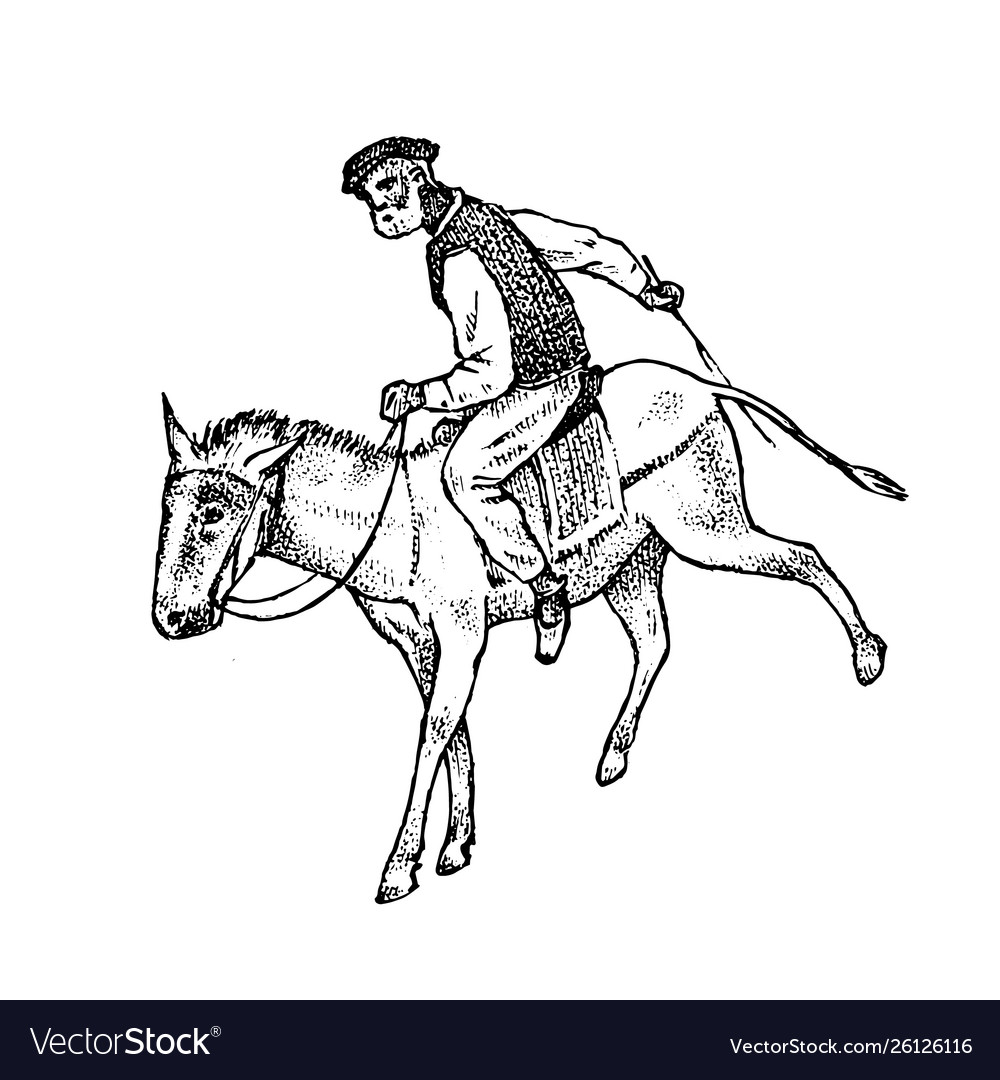 Man rider in national clothes greek on horse or