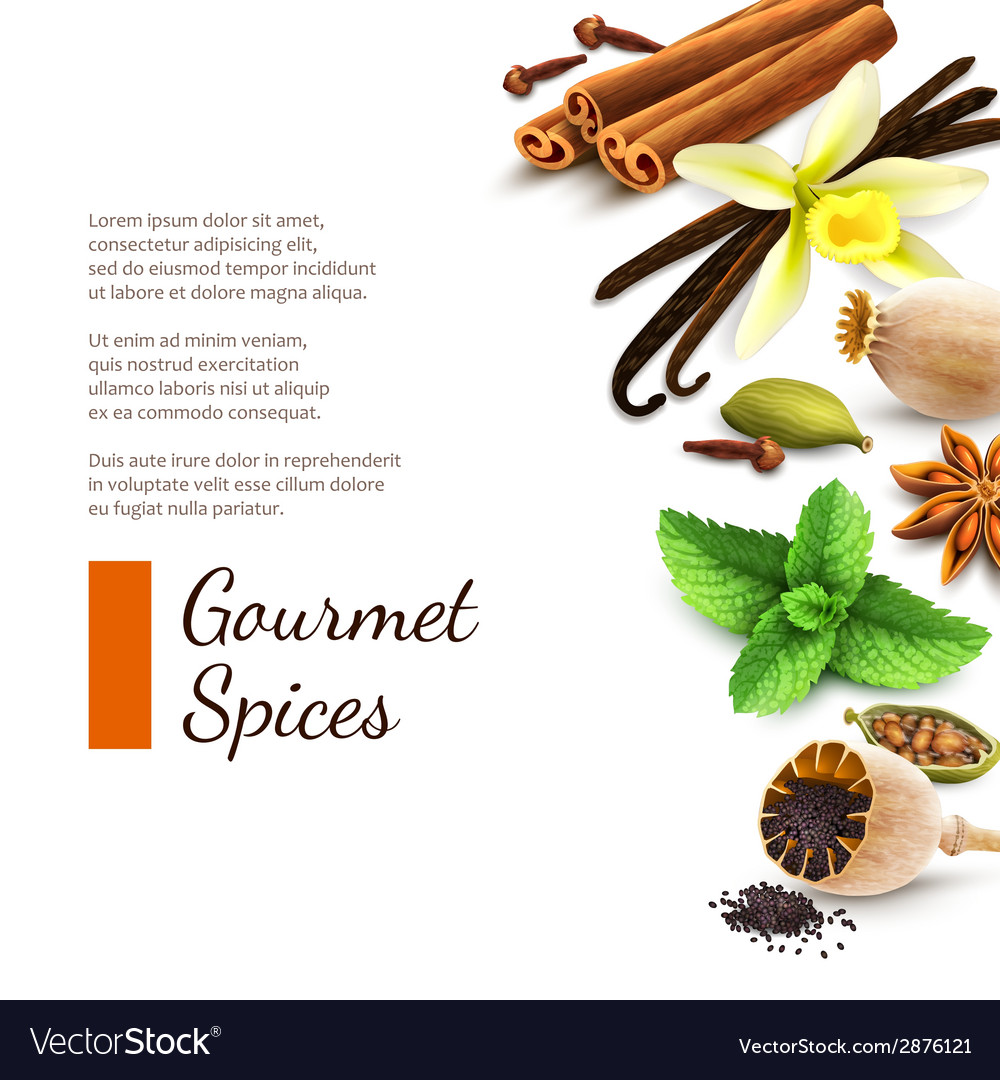 Spices on white background