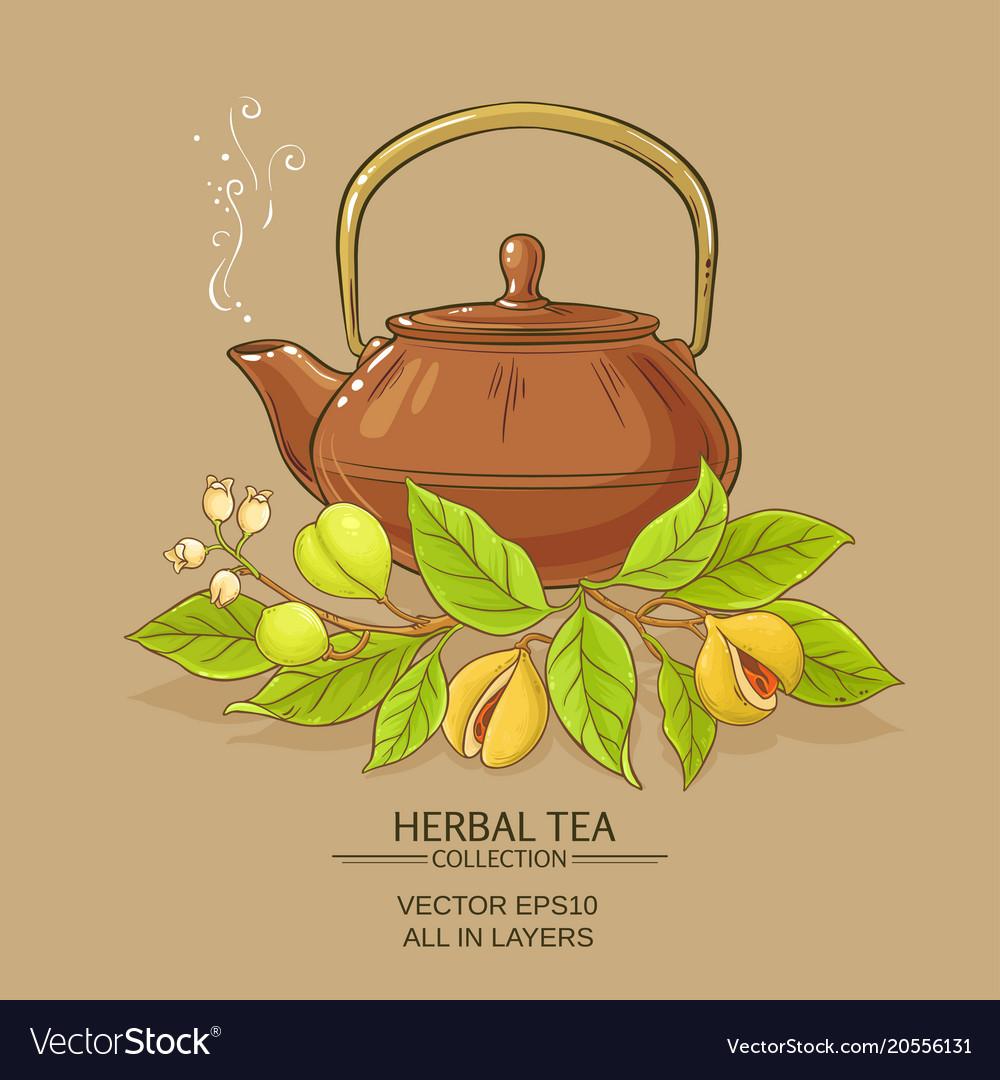 Nutmeg tea