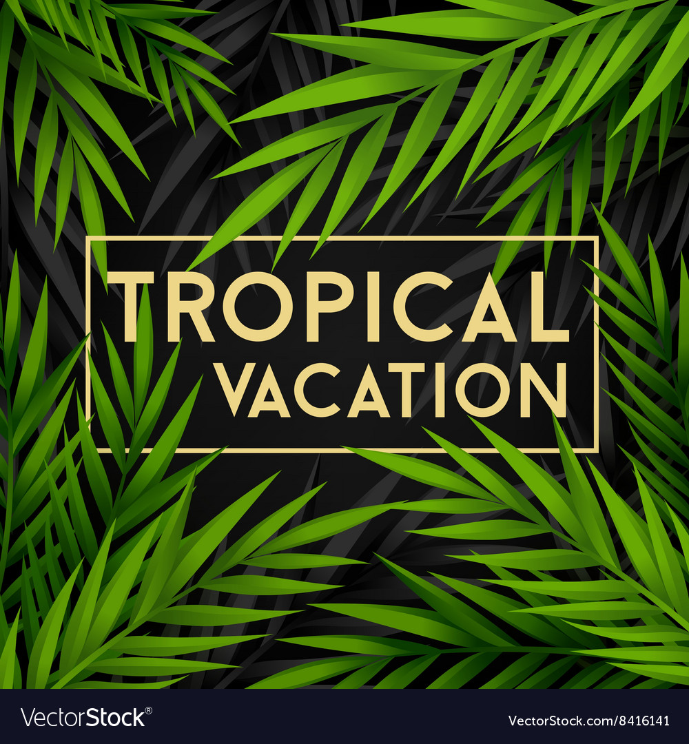 Tropical vacation card with jungle leaves