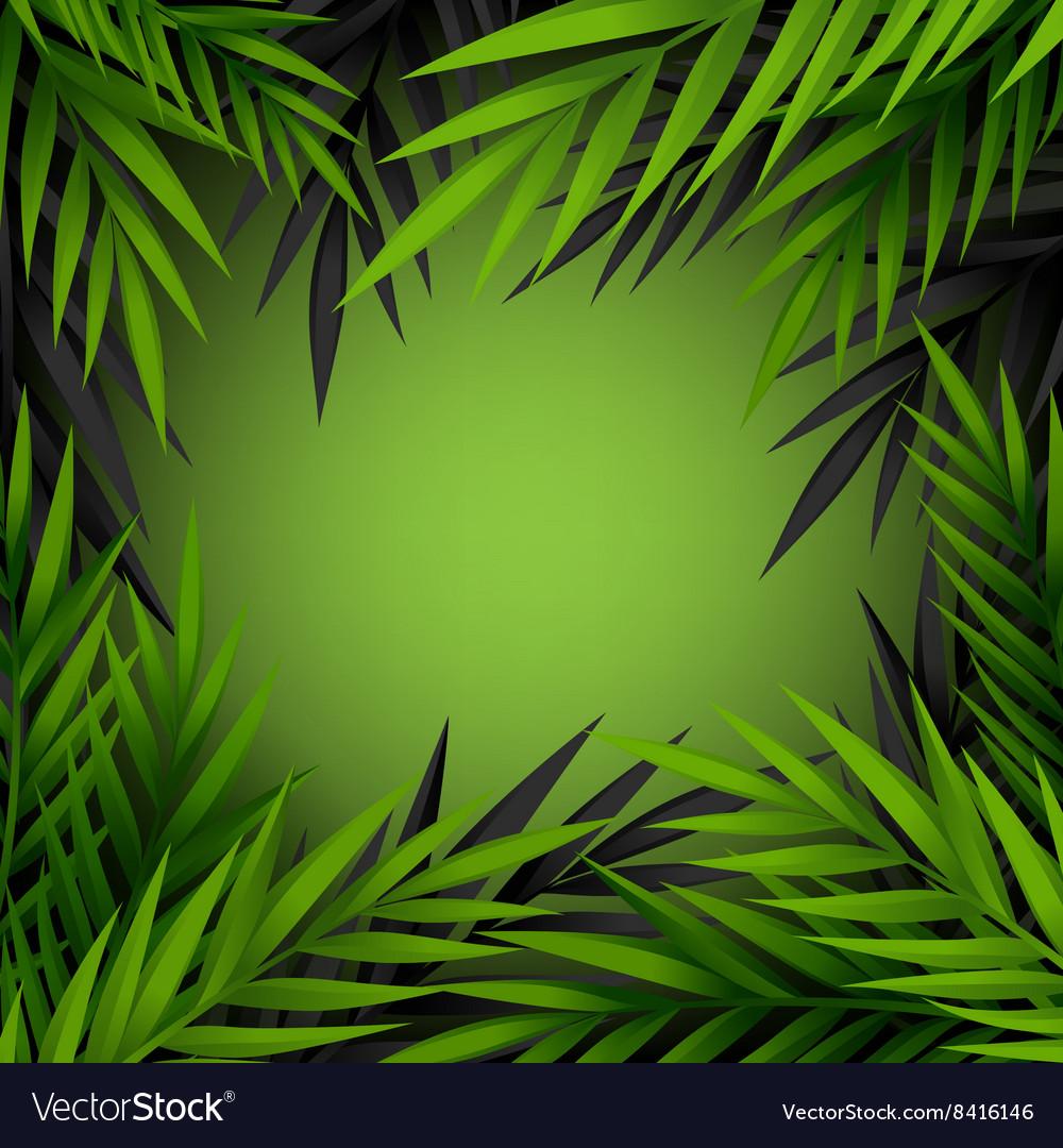 Green and dark jungle leaves frame