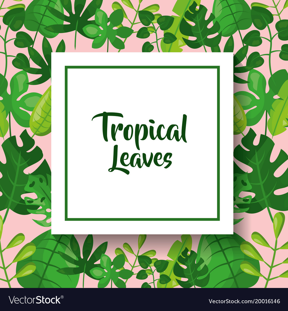 Tropical leaves greeting card green