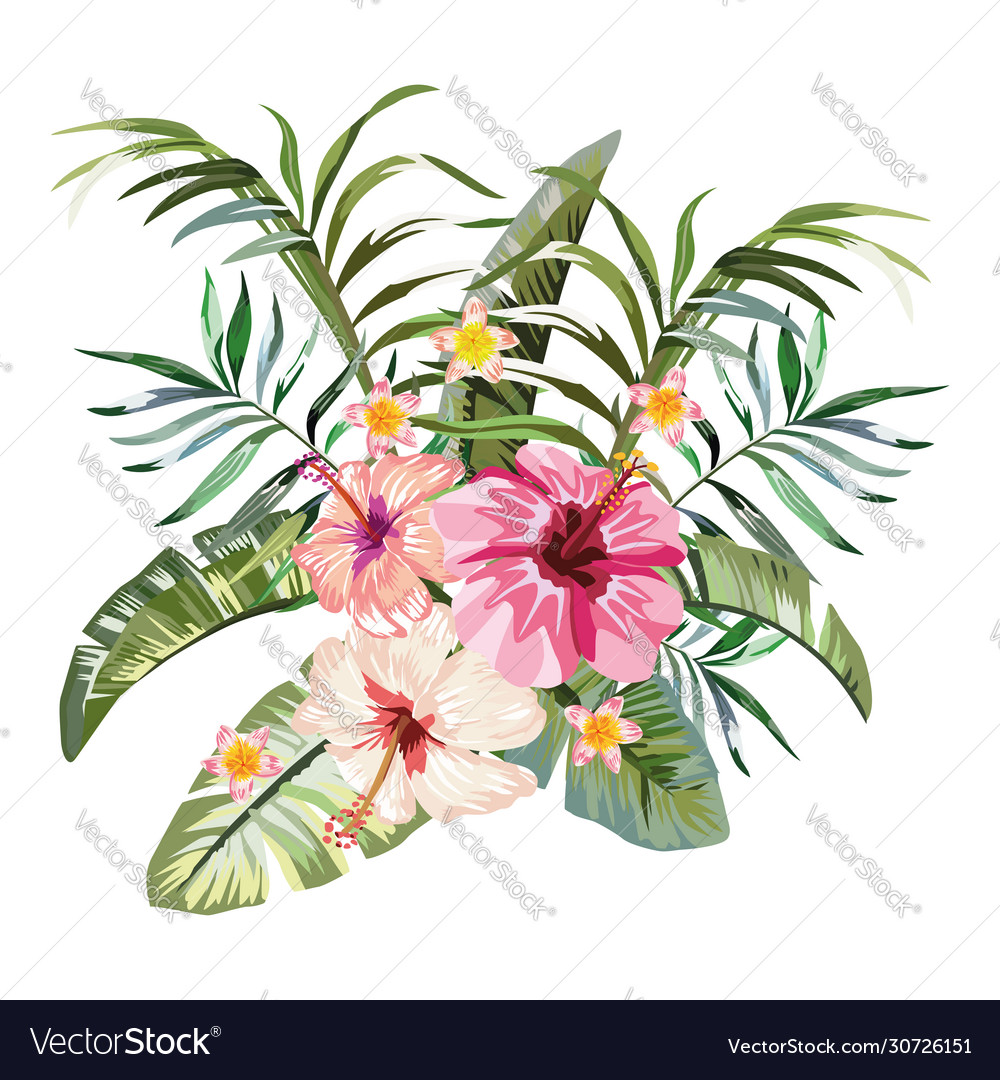 Tropical flowers composition white background