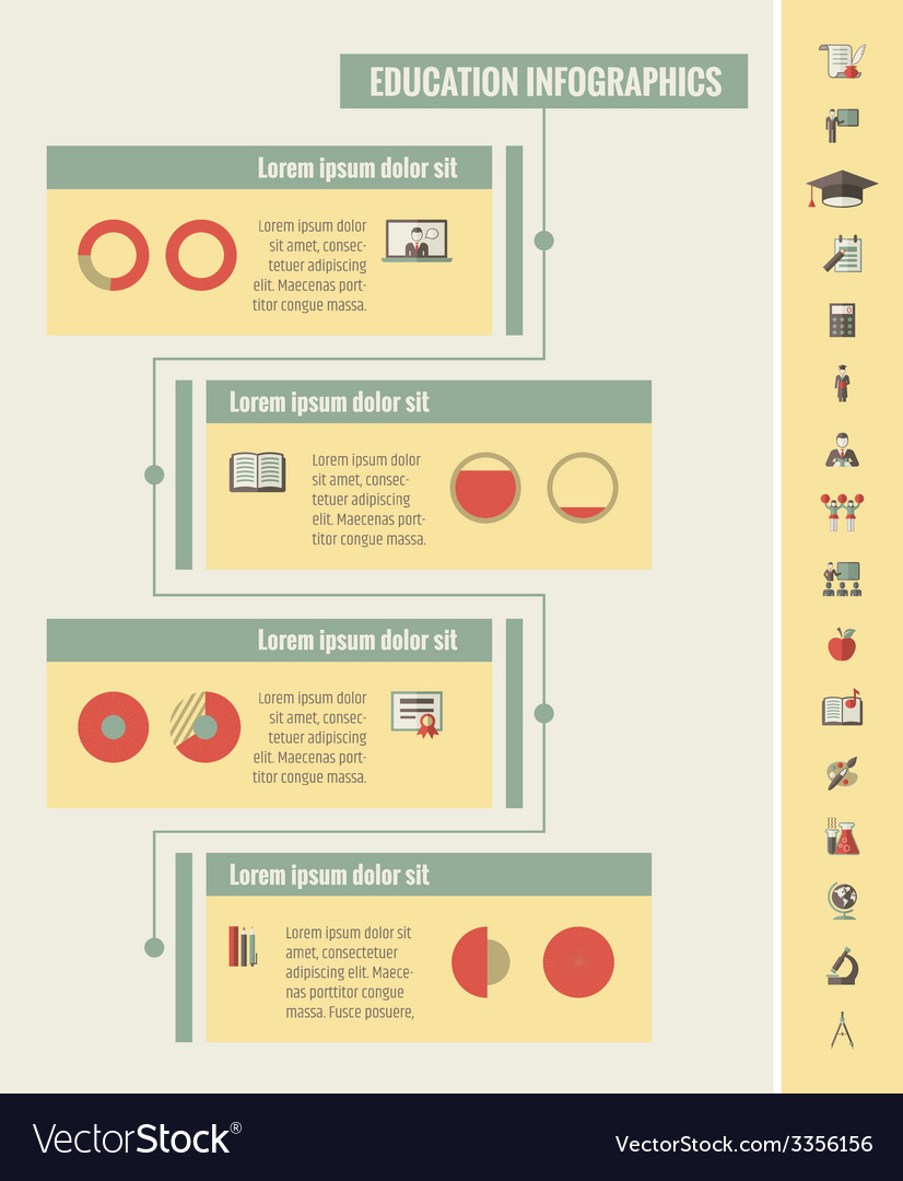 Education Infographic Elements vector image