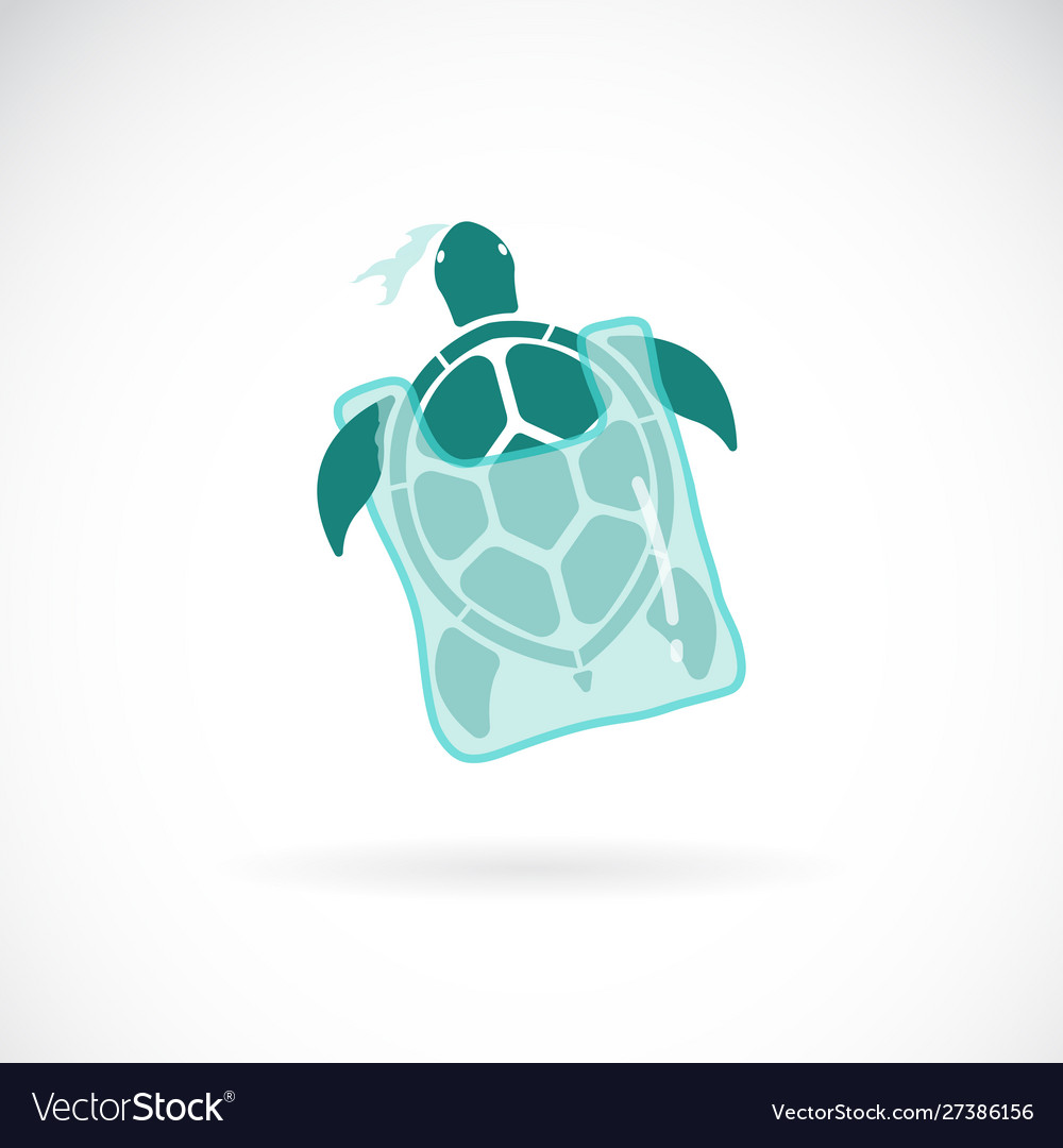 Turtle trapped in a plastic bag on white
