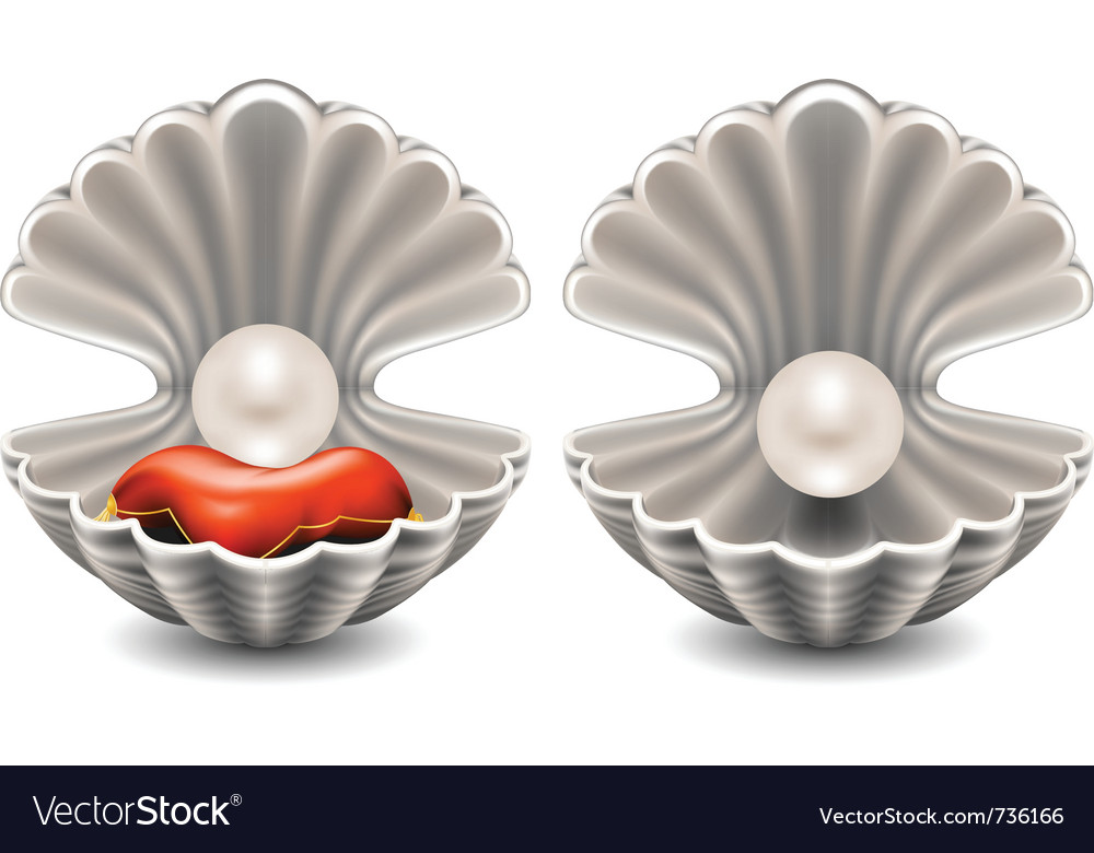 Seashell with pearl vector image