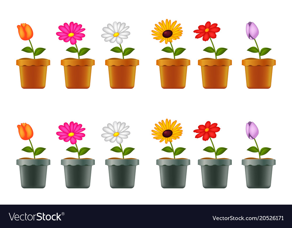 Different types of flowers in pots vector image  sc 1 st  VectorStock & Different types of flowers in pots Royalty Free Vector Image
