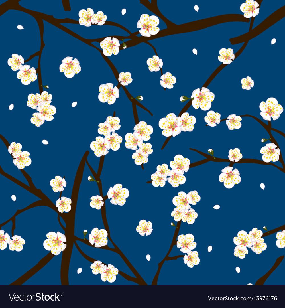White plum blossom flower on indigo blue vector image mightylinksfo