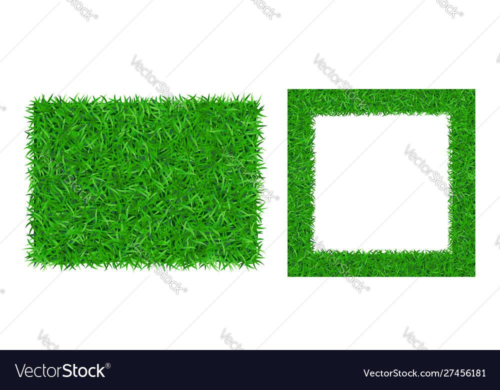 Green grass background 3d set lawn greenery