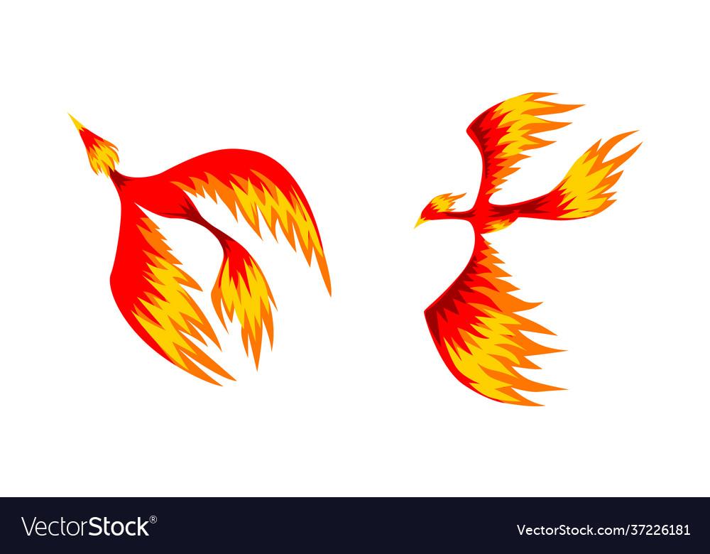 Set phoenix firebirds mythical fairy tale bird
