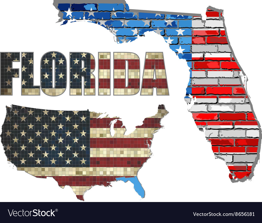 USA state of Florida on a brick wall vector image