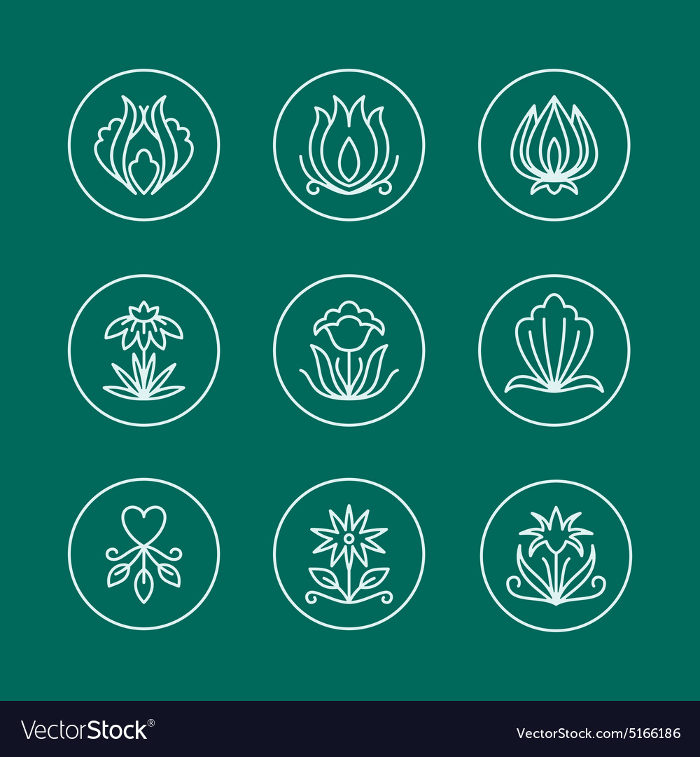 Set of Thin Line Floral Design Elements for Logos