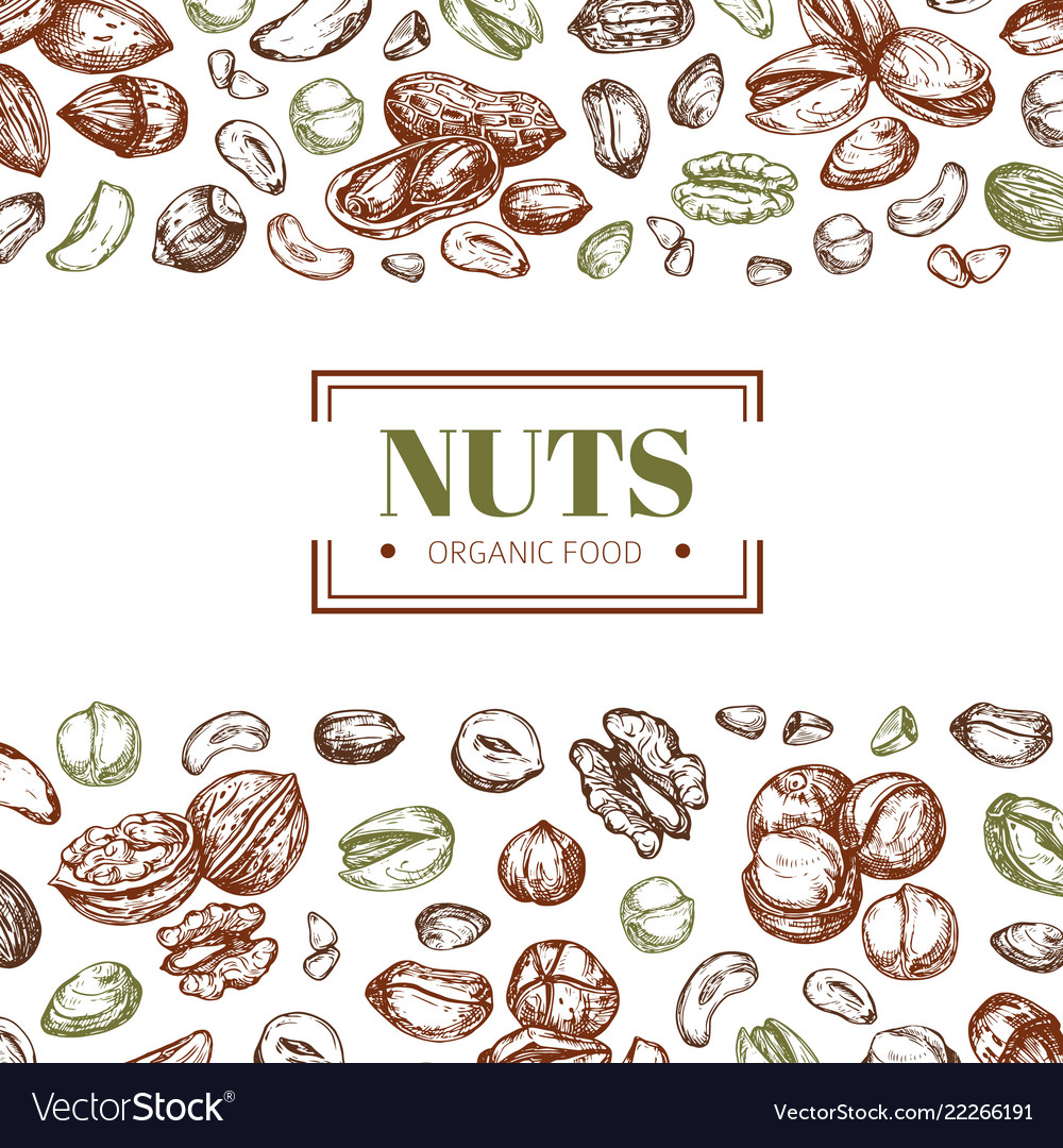 Background with nuts cashew and walnut pistachio