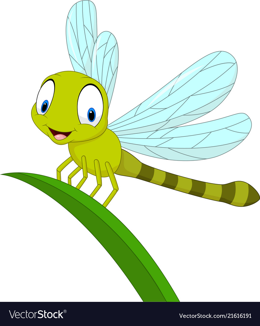 Cartoon Funny Dragonfly On Leaf Royalty Free Vector Image