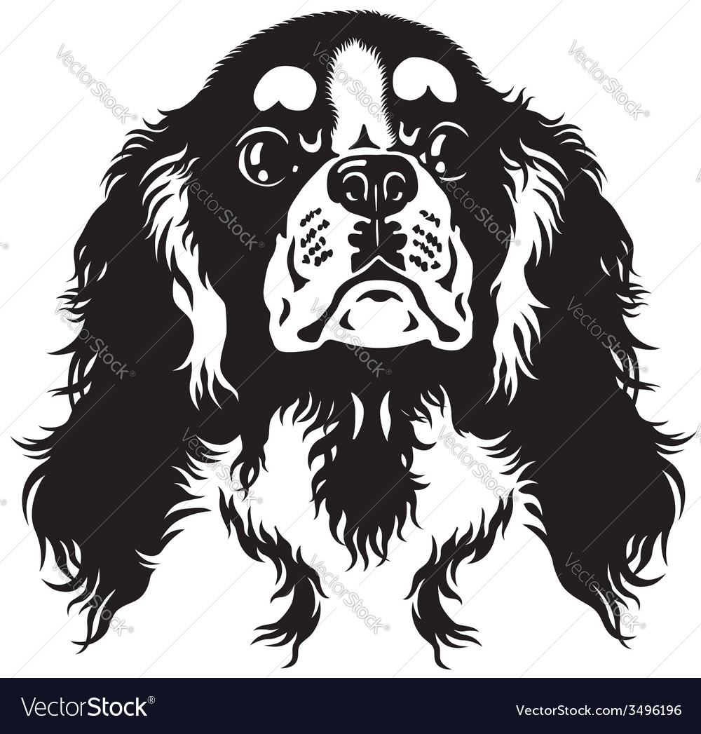 Charlie the Cavalier Coloring and Activity Book | Cavalier king ... | 1047x1000