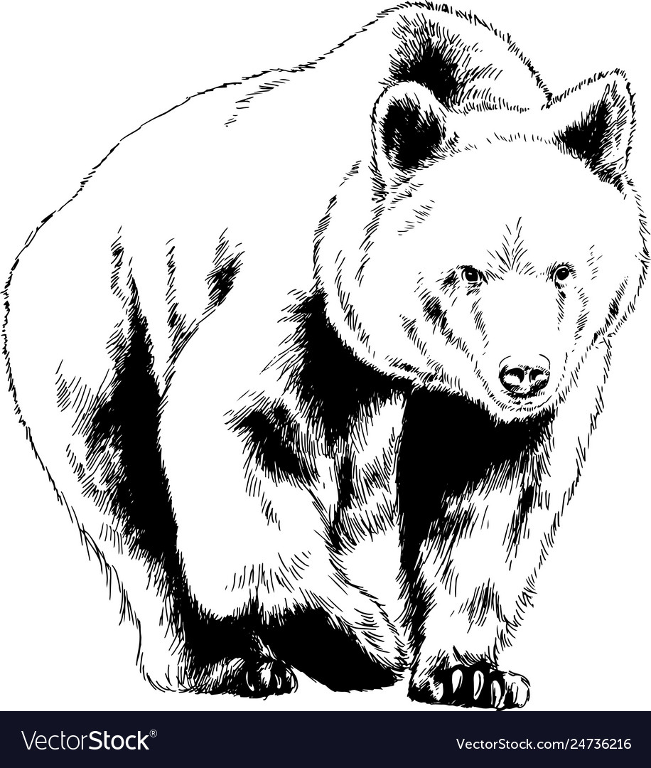 Bear drawn with ink from hands