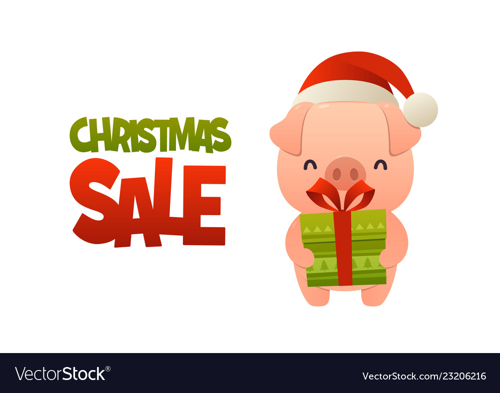 Happy cute cartoon pig with gift present and text