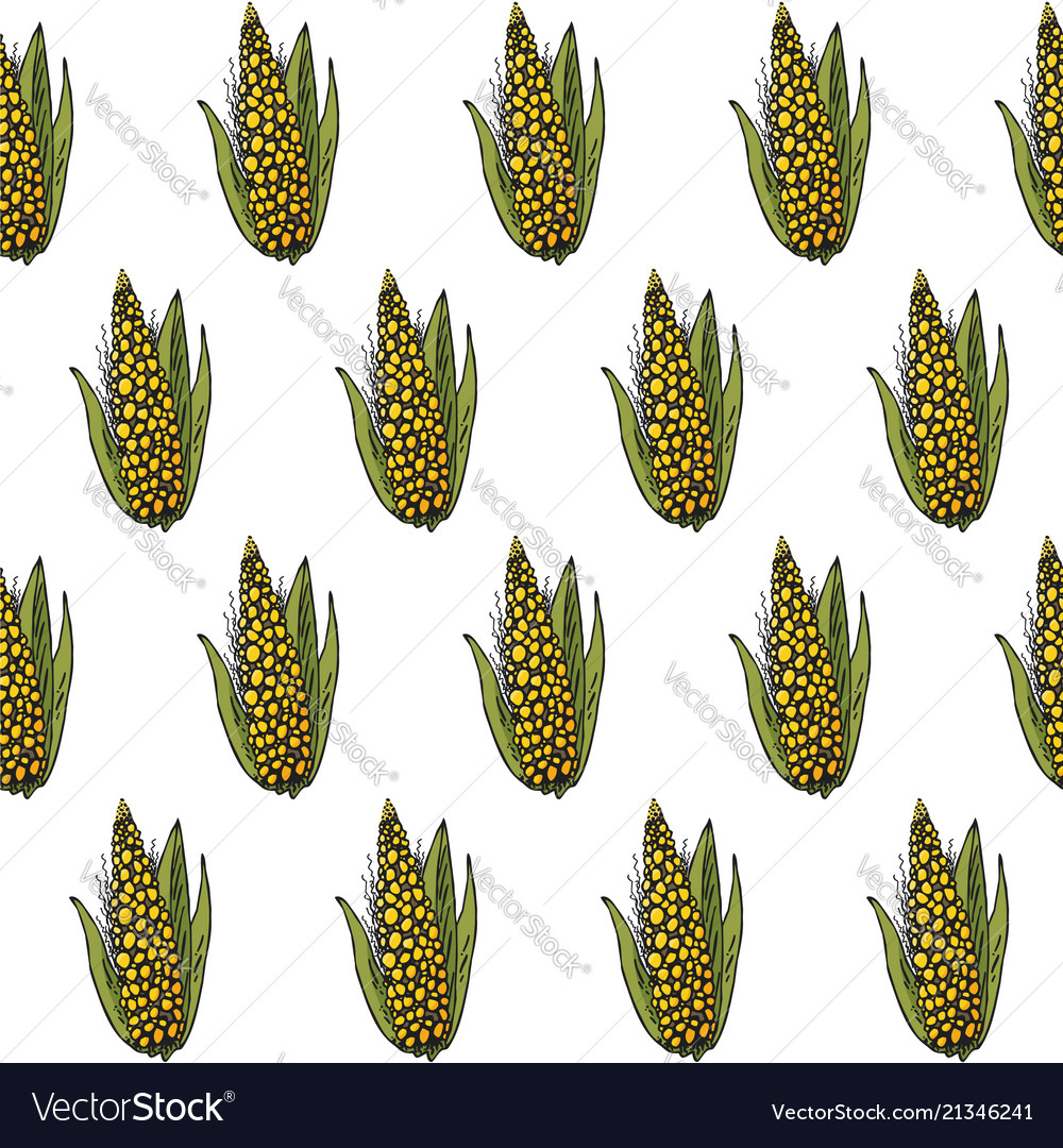 Seamless hand-drawn bright corn pattern