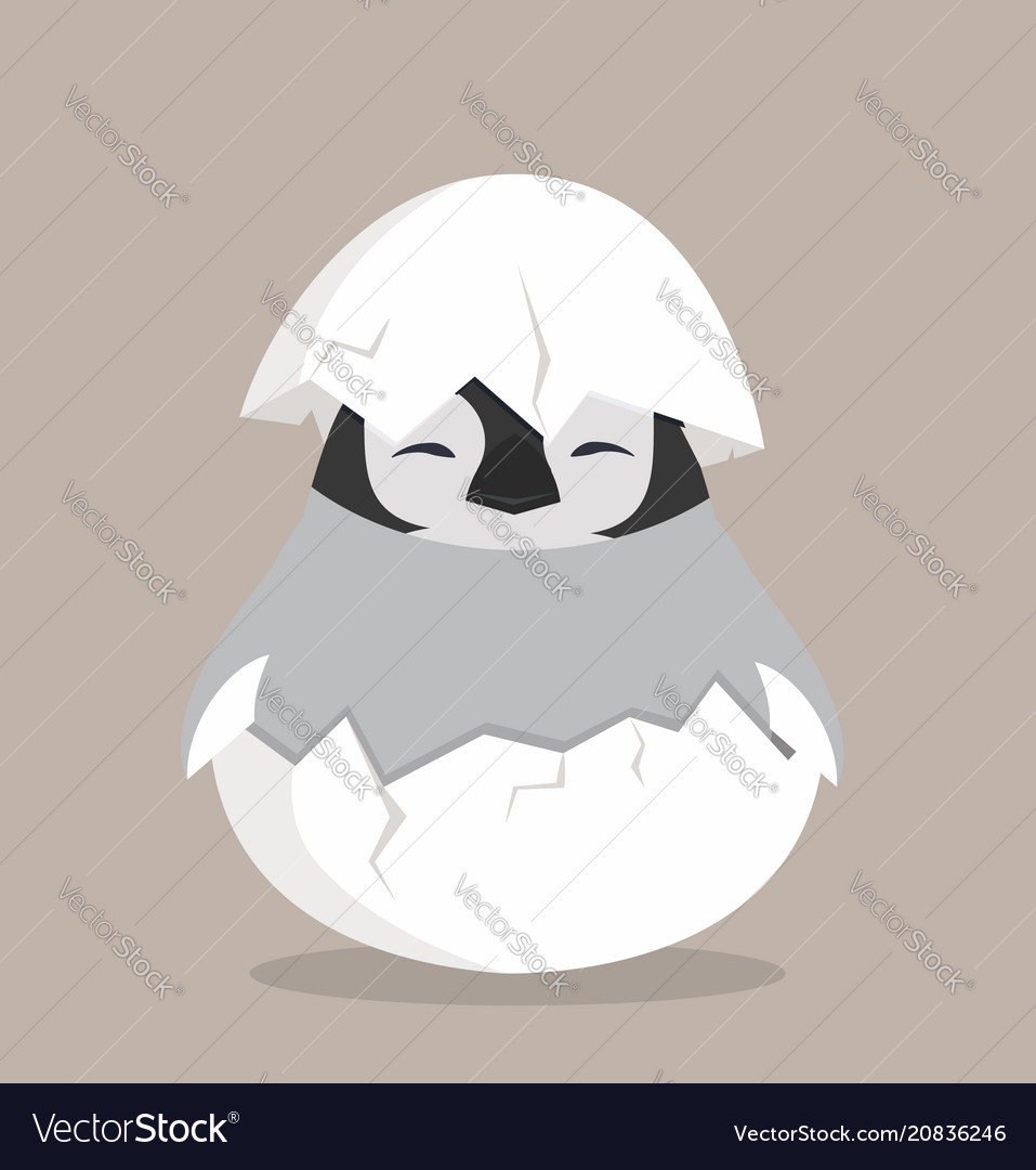 Baby penguin hatched in egg vector image