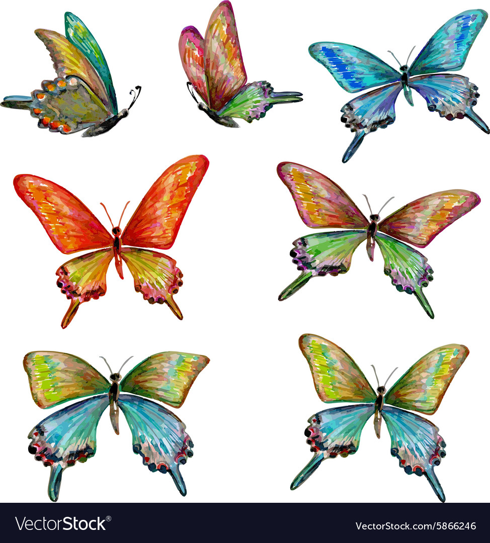 Collection of cute butterflies watercolor painting