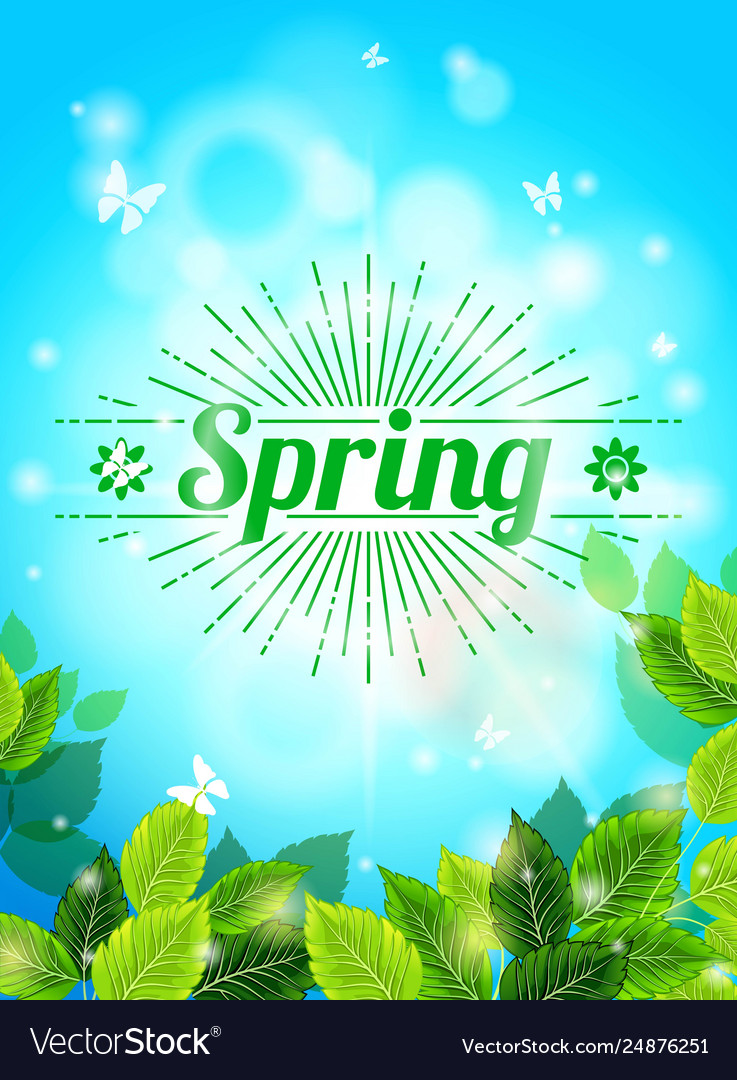 Realistic spring background blue sky green leaves