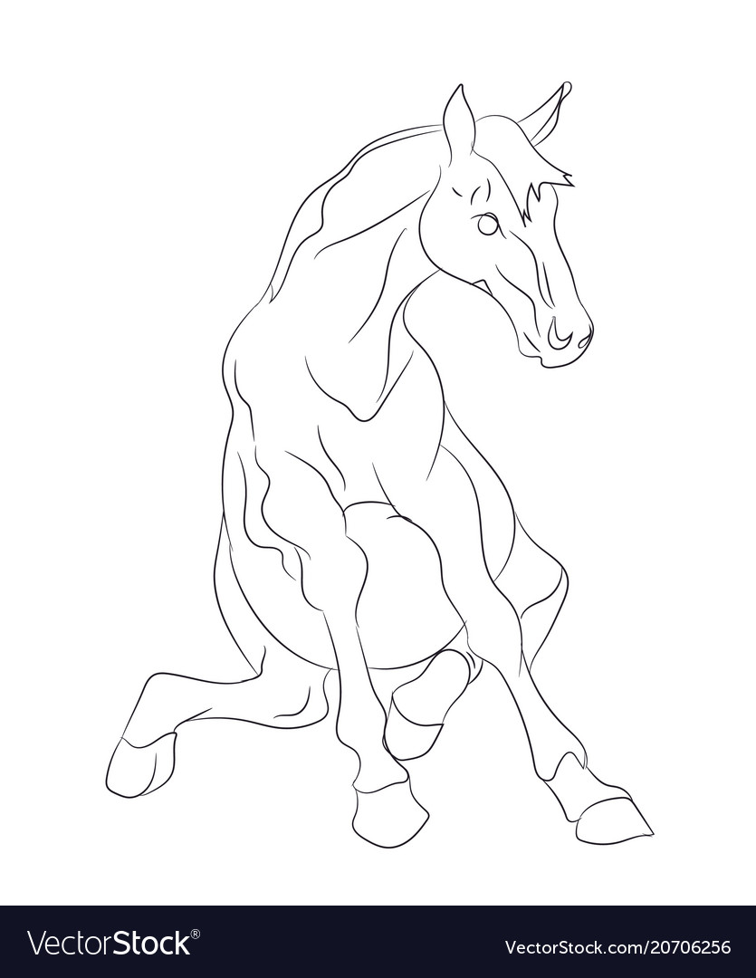Horse sits lines vector image