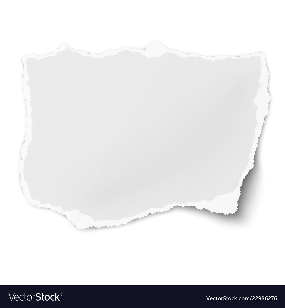 tattered paper tear with soft shadow isolated vector image