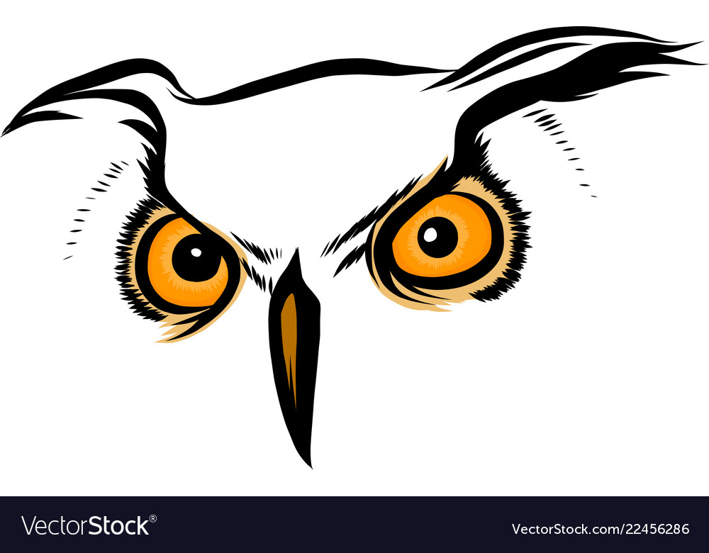 Brown silhouette an owl on a white