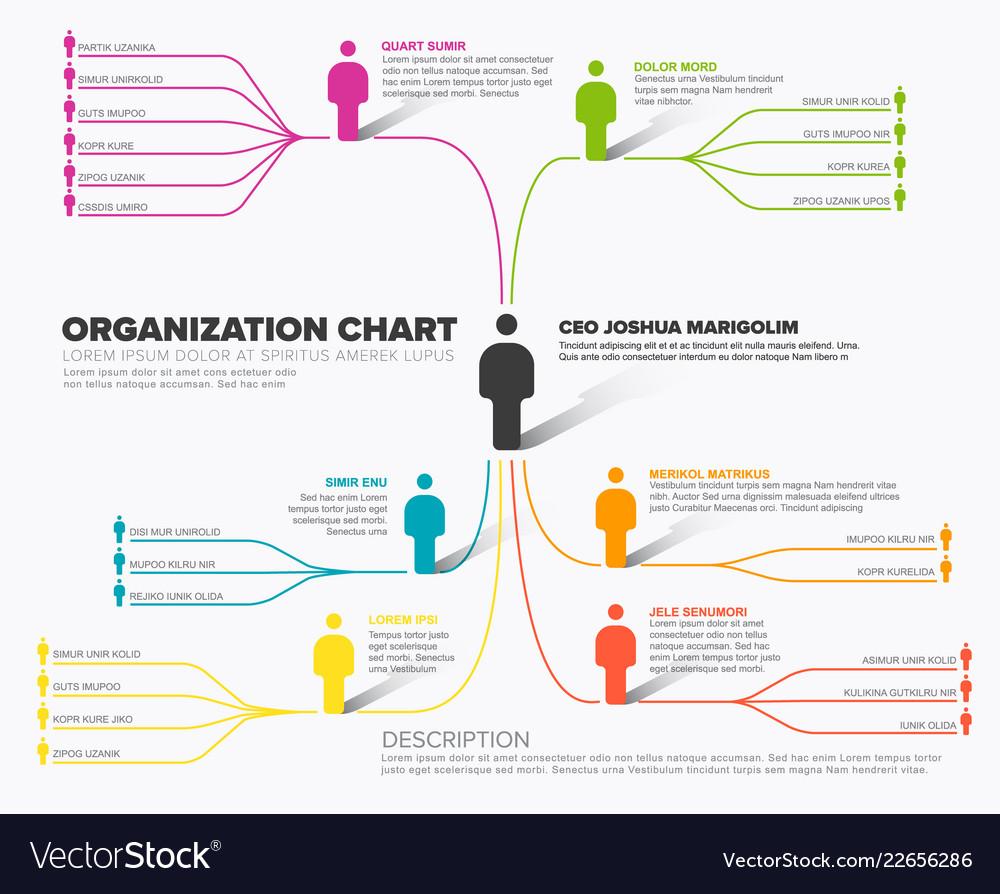 Minimalist company organization hierarchy schema