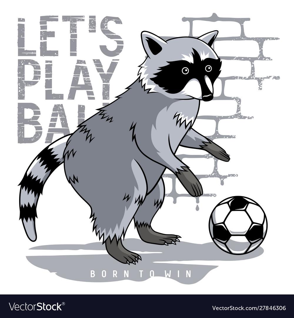 Athletic raccoon 002