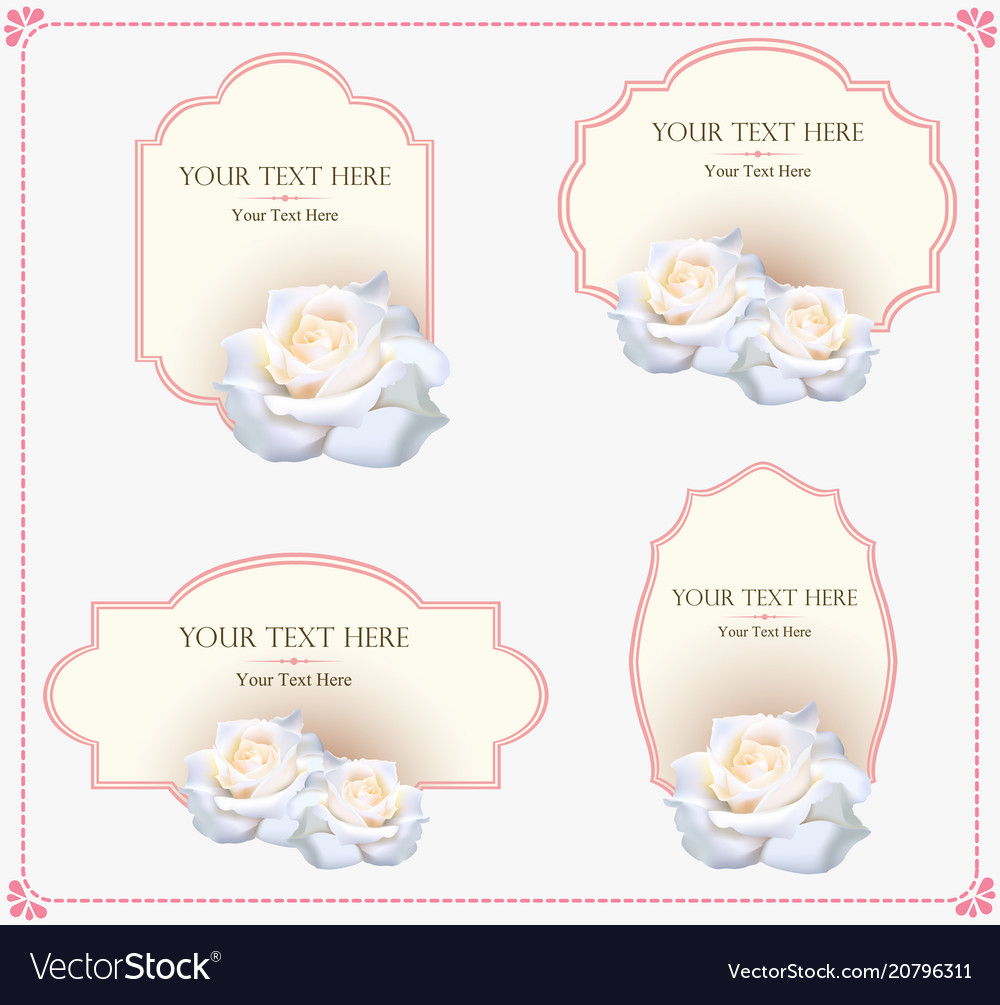 Vintage ornament greeting card template vector image