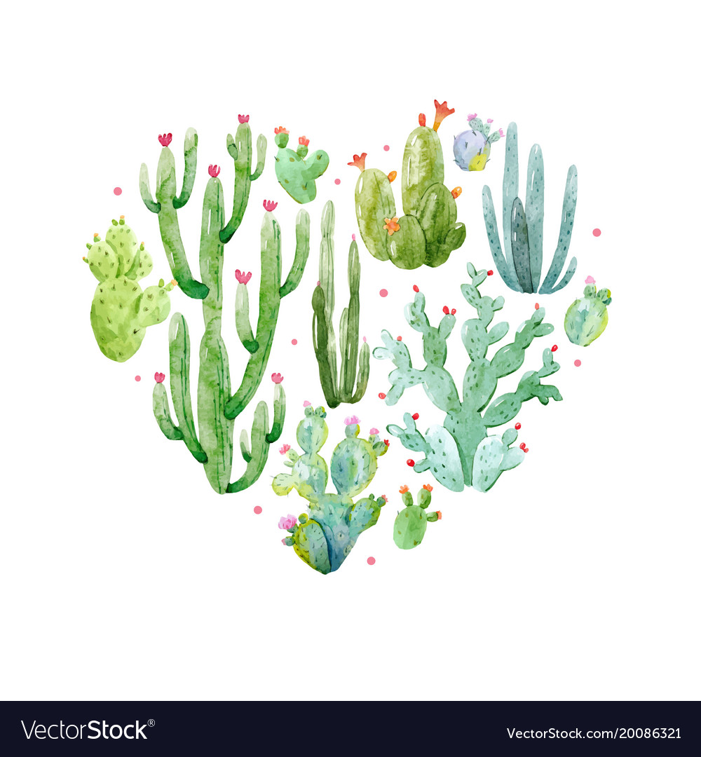 watercolor cactus heart composition royalty free vector. Black Bedroom Furniture Sets. Home Design Ideas