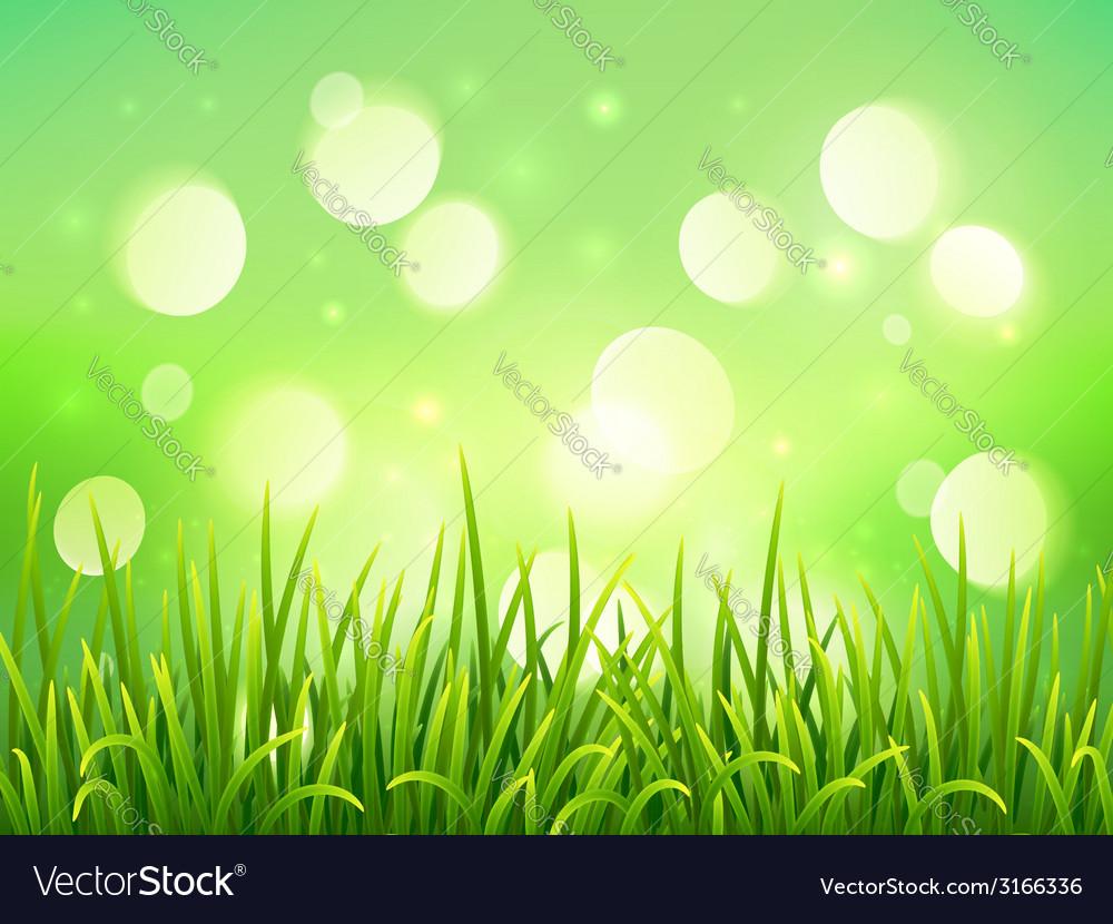 Green grass on bokeh light effect background