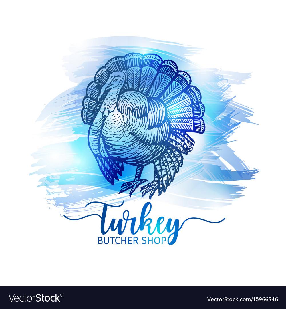 Hand drawn sketch turkey natural turkey