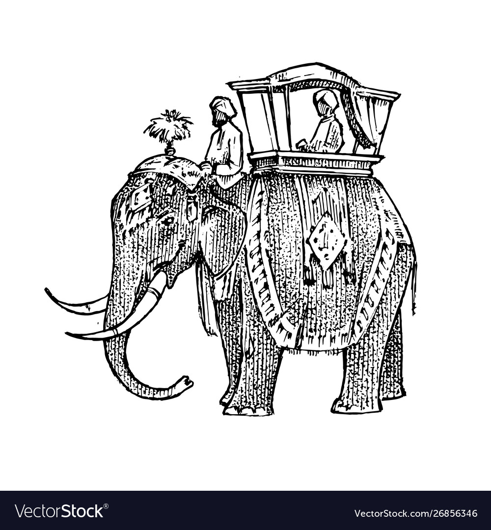 Set india culture elephant and temple a woman